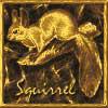 Аватар для Squirrel